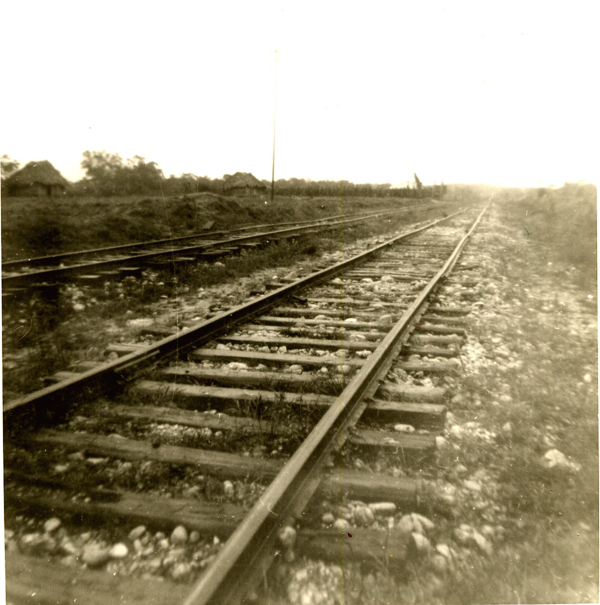 Tracks of Ferrocarril del Sureste